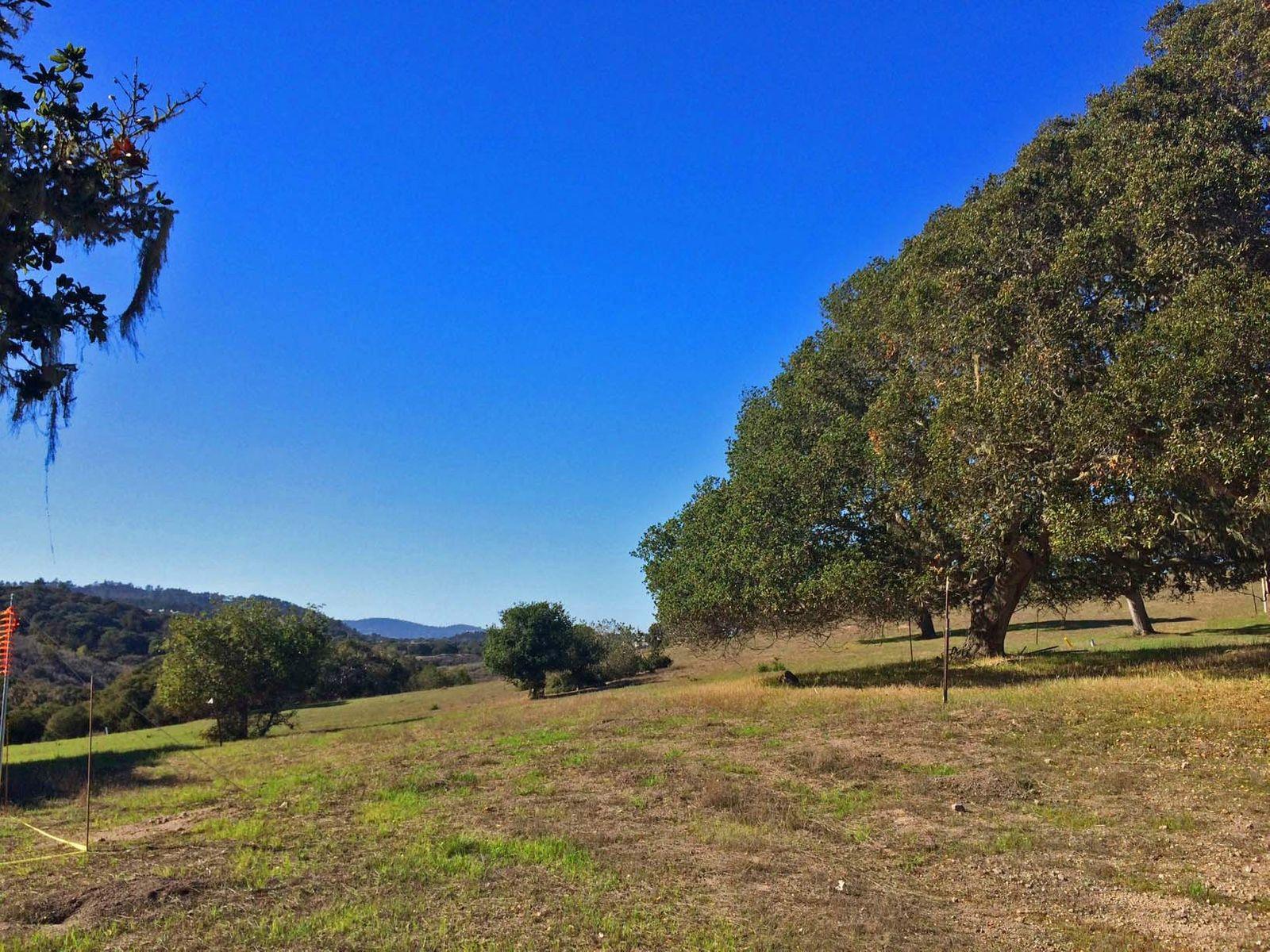 Nearly Level 2.3 Acres Monterra Homesite