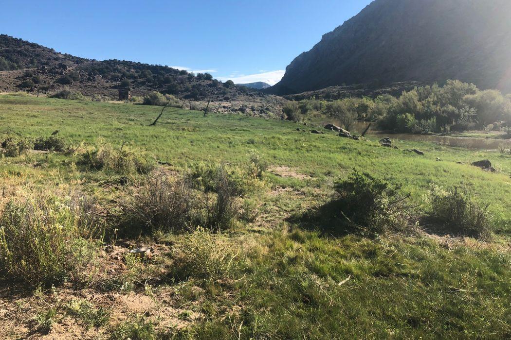Pilar Rio Grande Land Dixon, NM 87549