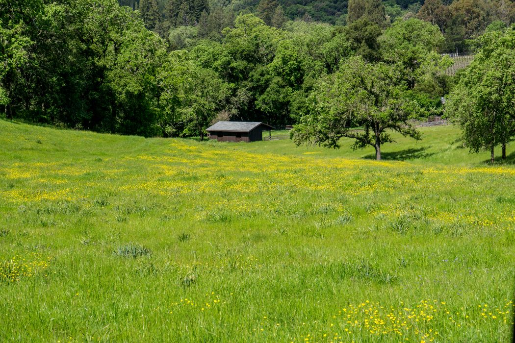 6545 Redwood Retreat Road Gilroy, CA 95020