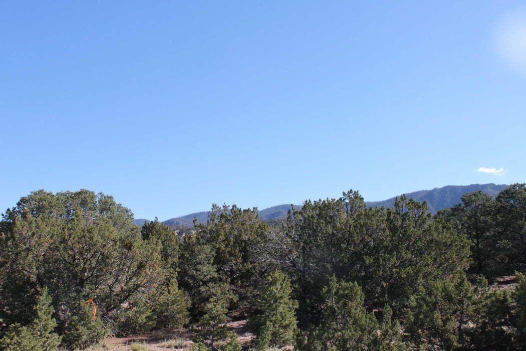 22 Camino Amor, Lot 46 Santa Fe, NM 87574