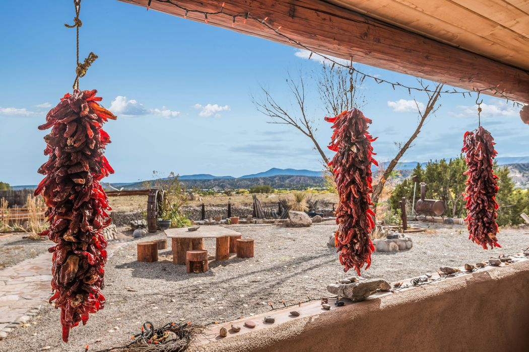 33 Private Drive 1613a Medanales, NM 87548