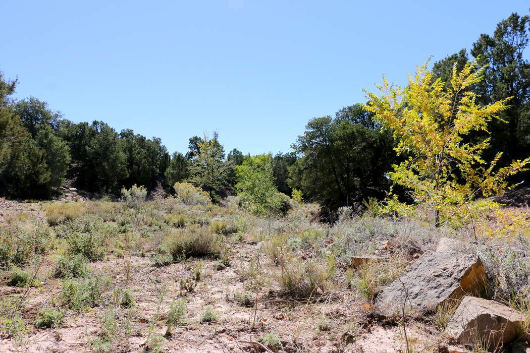 1010 Sierra Del Norte (Lot 24) Santa Fe, NM 87501