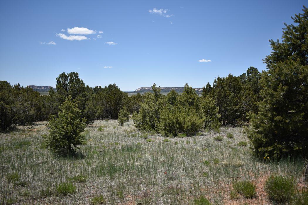 26 Big Notch Forest Trl Ramah, NM 87321