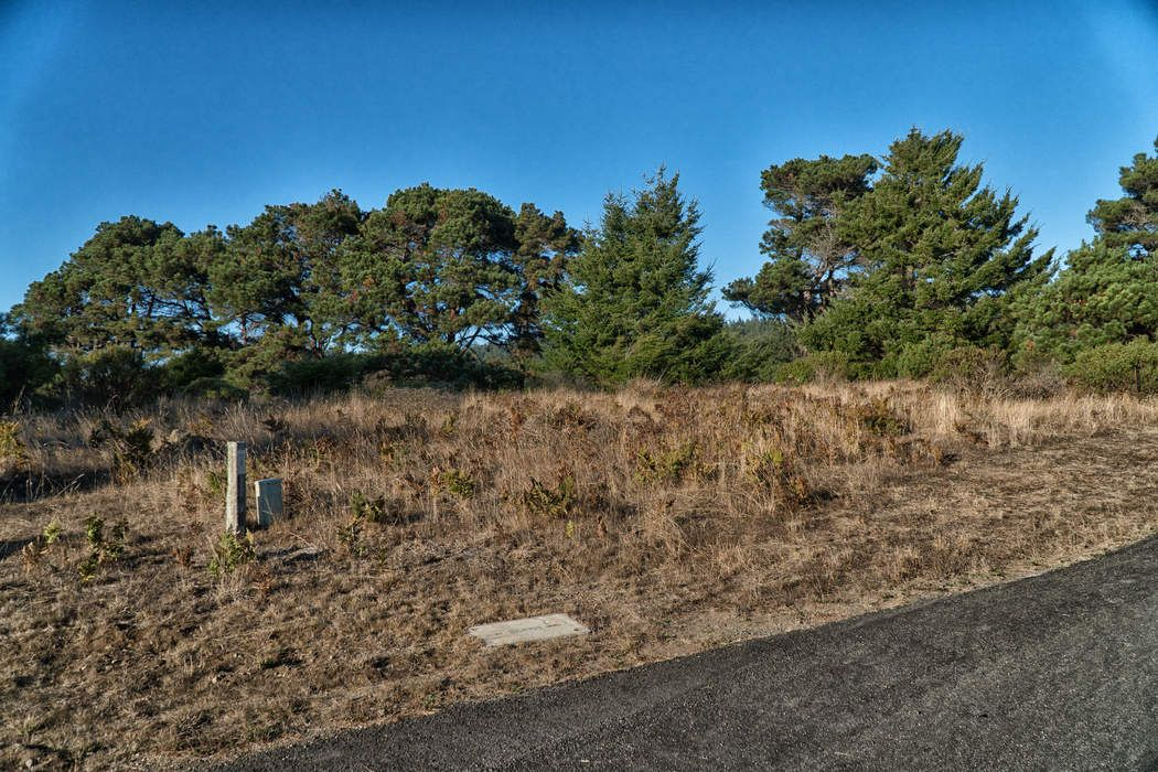41310 Tallgrass The Sea Ranch, CA 95497
