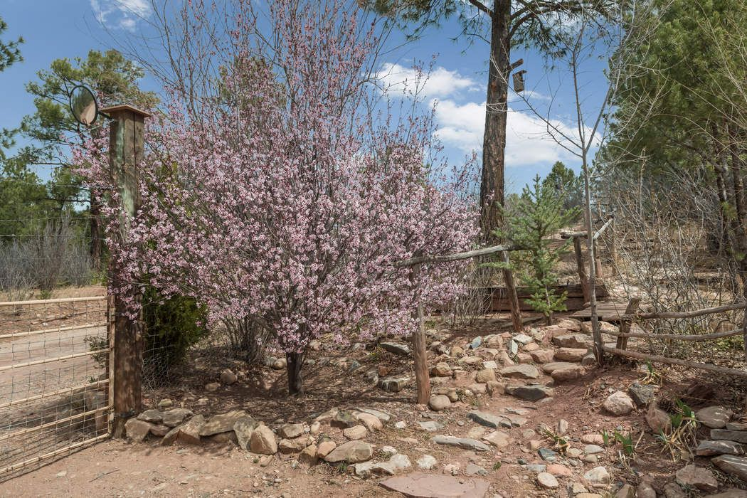 5 Frost Way Dr Pecos, NM 87552