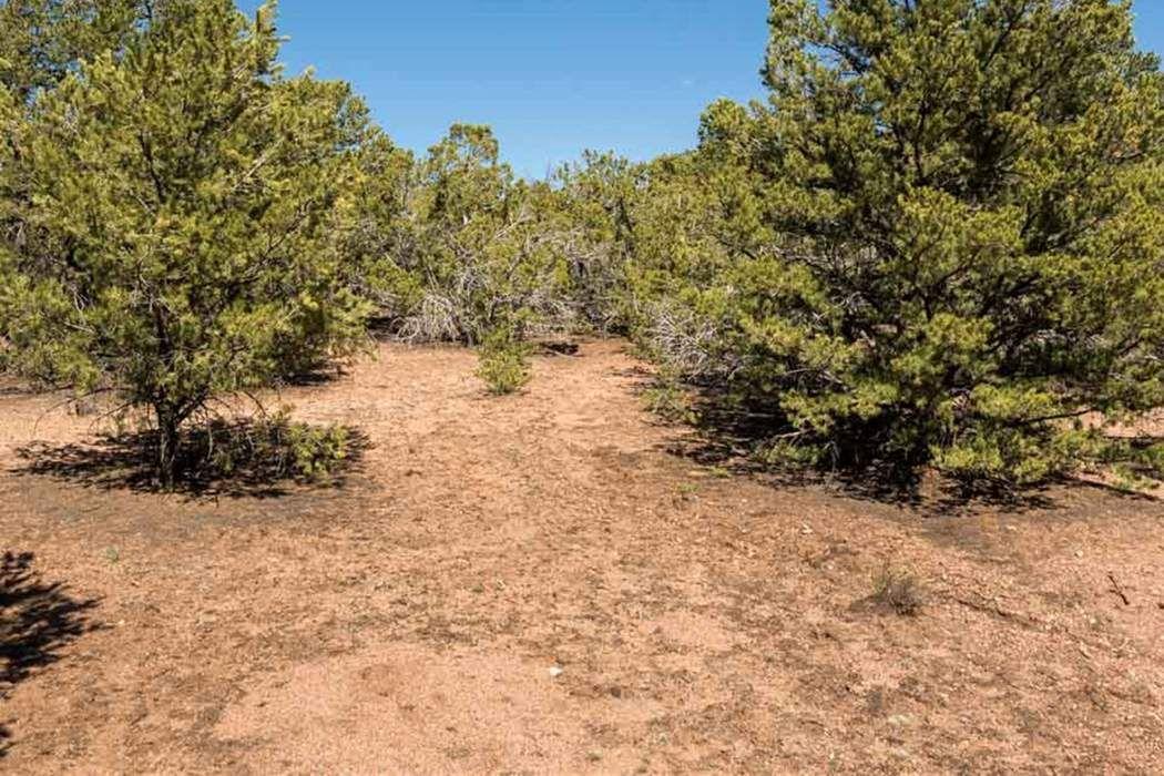 1479 Bishops Lodge Road, Lot C Santa Fe, NM 87506