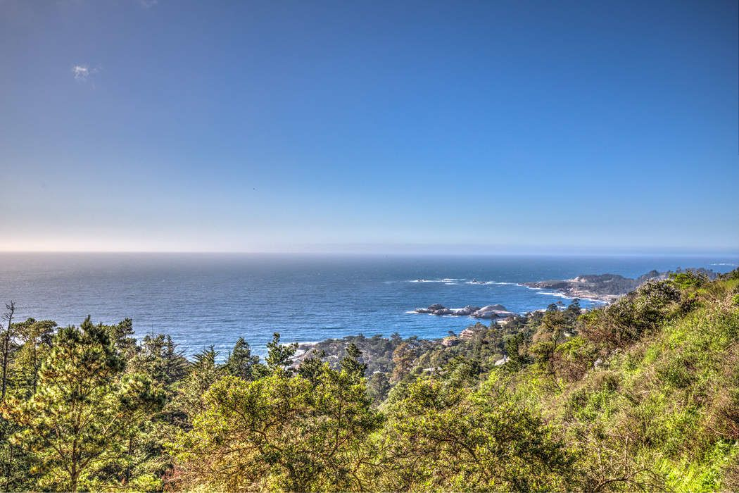 219 Peter Pan Road #A Carmel, CA 93923