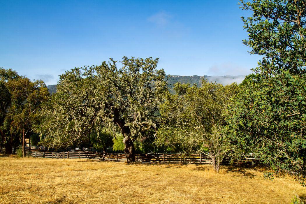 0 Encina Drive Carmel Valley, CA 93924
