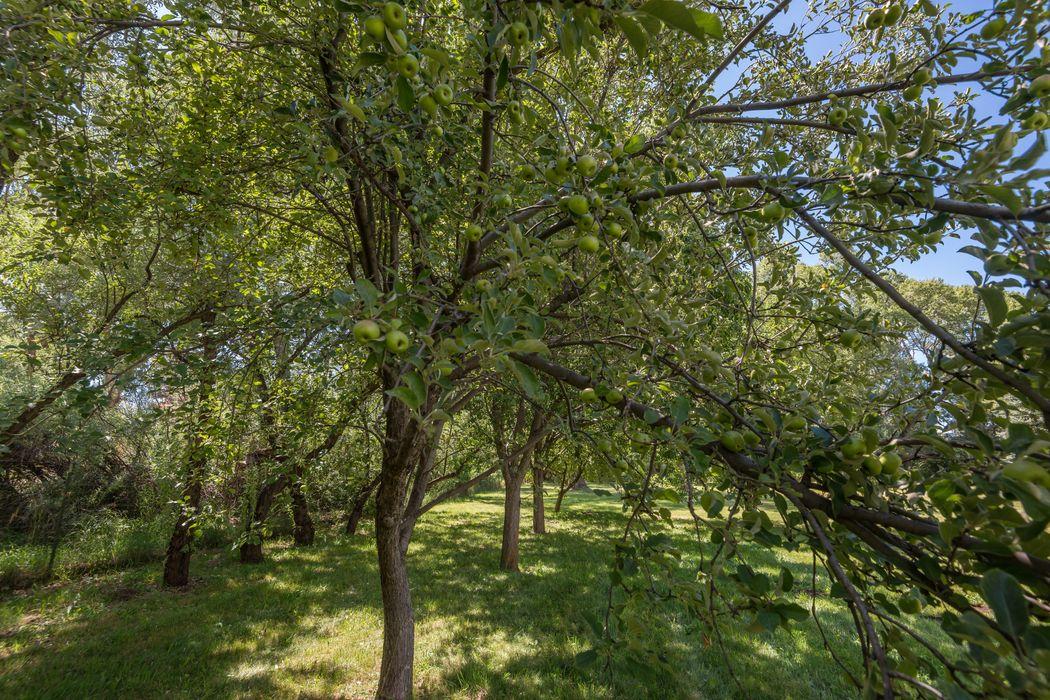5 Camino Rael Pecos, NM 87552