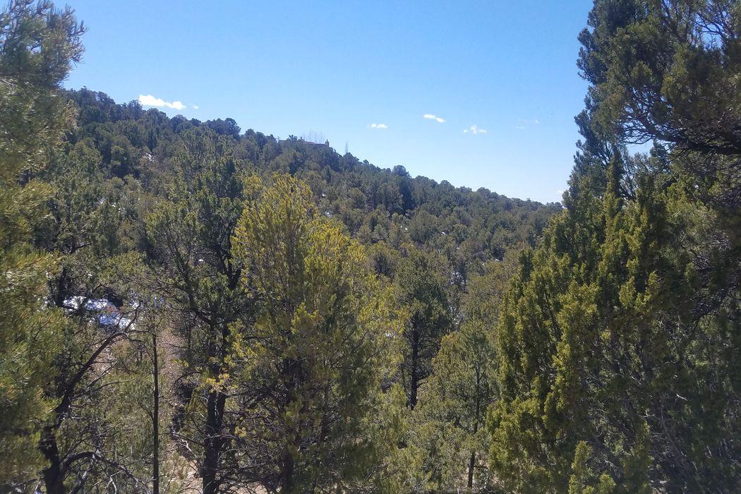 1989 Cerros Colorados Santa Fe, NM 87501
