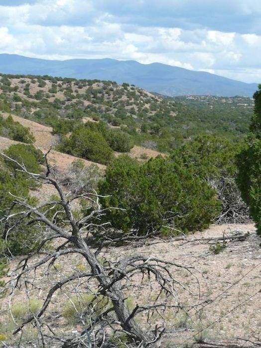 82 Paseo De La Tierra, Tract A Santa Fe, NM 87506