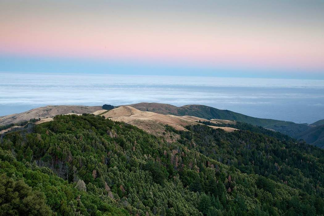 Palo Colorado Big Sur, CA 93923