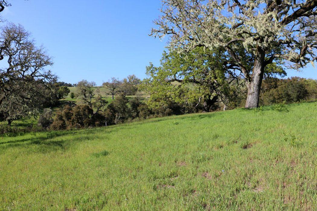 24 Pronghorn Run Carmel, CA 93923