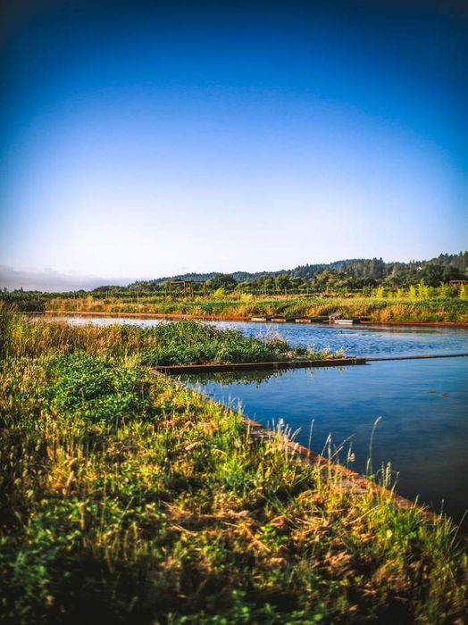 2836 Dry Creek Rd Healdsburg, CA 95448