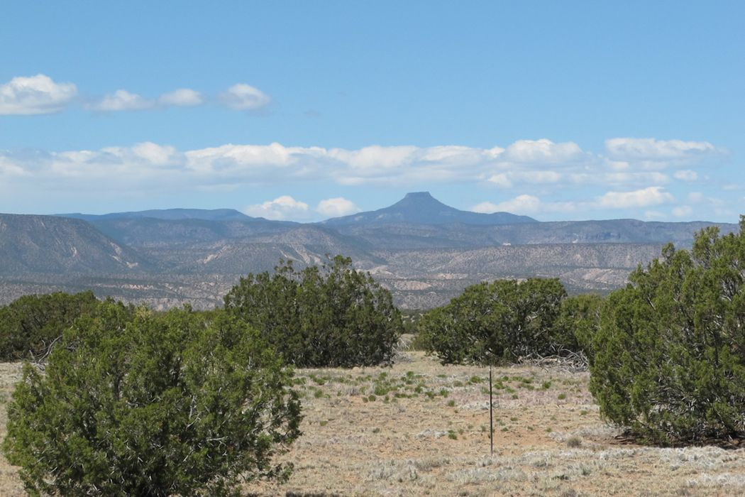 Abiquiu Heights Medanales, NM 87548