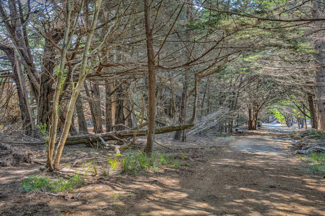 40760 Leeward Rd The Sea Ranch, CA 95497