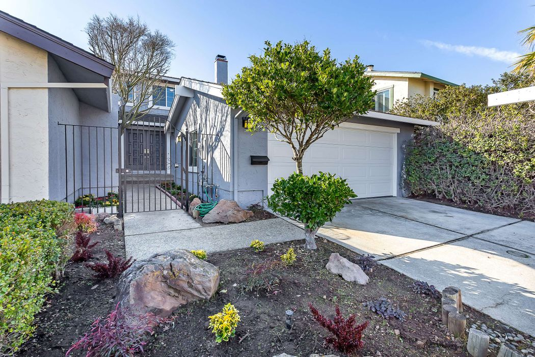 Belmont Beauty With Canyon Views Belmont, CA 94002
