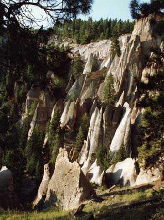976 Vallecitos Road Jemez Mountains, NM 87025