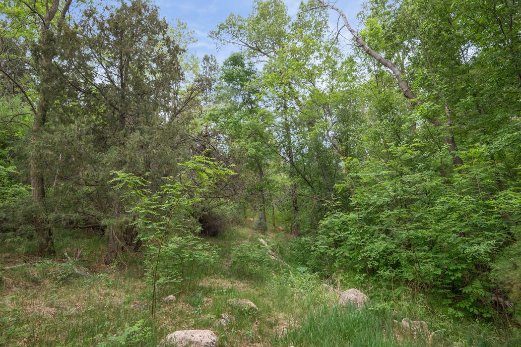 595a Cr 194 Canones, NM 87516