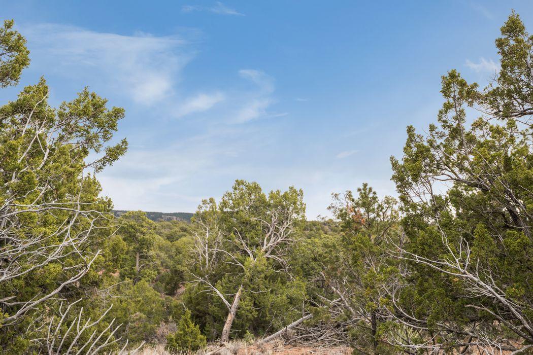 76 Cresta Pequena Santa Fe, NM 87505