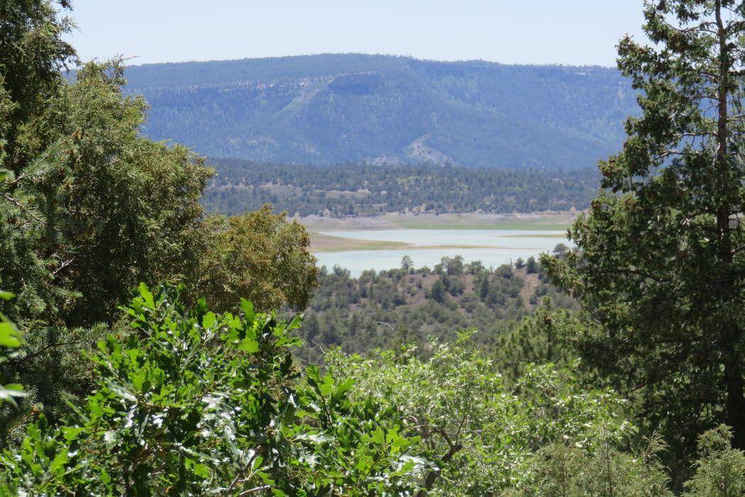 23 Vista Isla Los Ojos, NM 87551