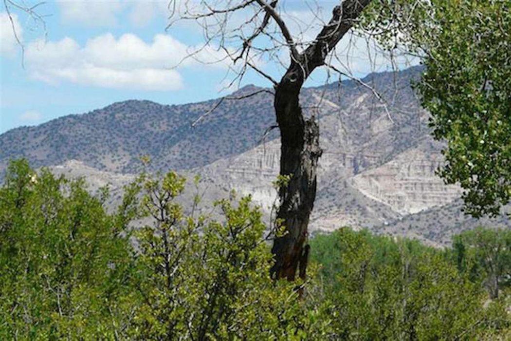 1095 Tract E2 County Road 142 Abiquiu, NM 87548
