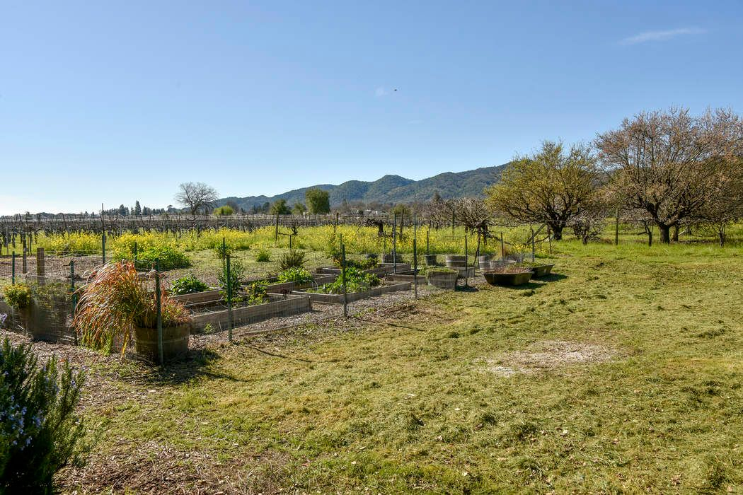 6696 Finnell Rd Yountville, CA 94599