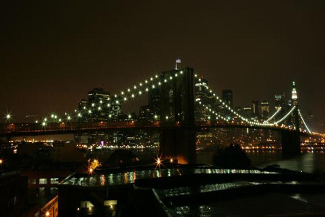 Picture Postcard Views Brooklyn, NY 11201