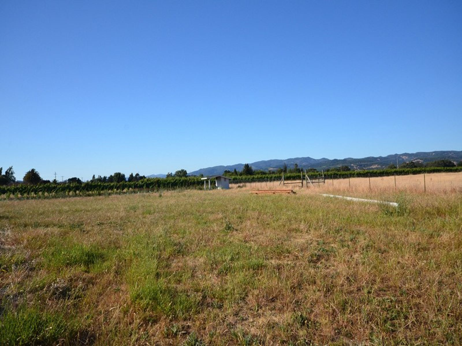 2 Acre Buildable Country Parcel