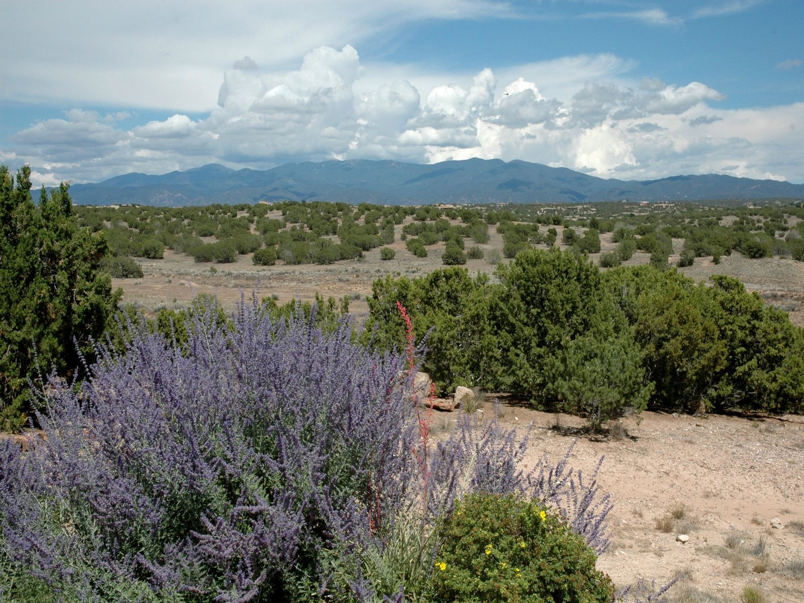 14  Rising Moon, Santa Fe NM Single Family Home - Santa Fe Real Estate