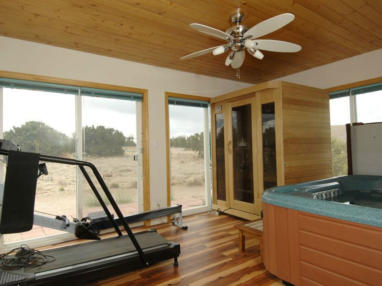 Workout/Studio/Office/Hot Tub Room
