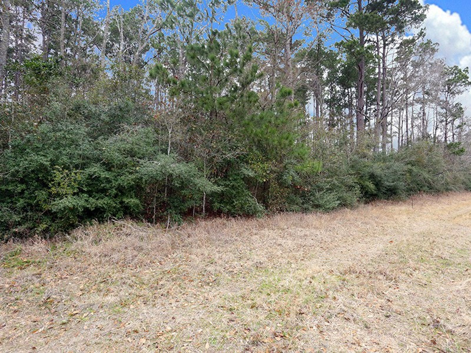 A0467 Reynolds George Tract 2, Magnolia TX Acreage / Lots - Houston Real Estate