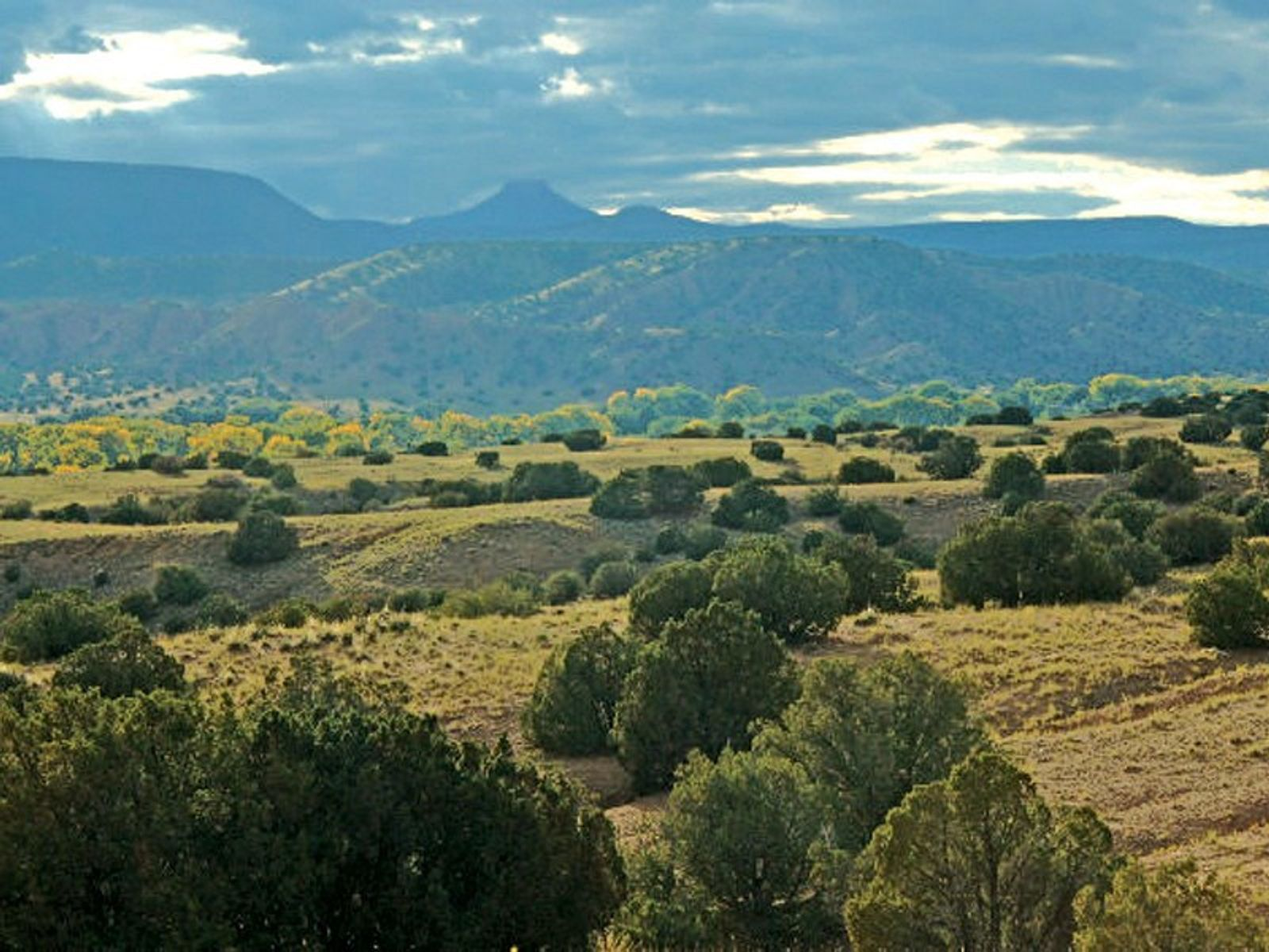 Lot 43 Vista De Pedernal, Medanales NM Acreage / Lots - Santa Fe Real Estate