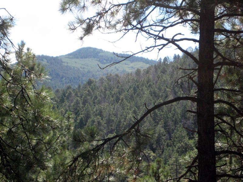 Sierra Los Pinos Lot 5 Unit 2