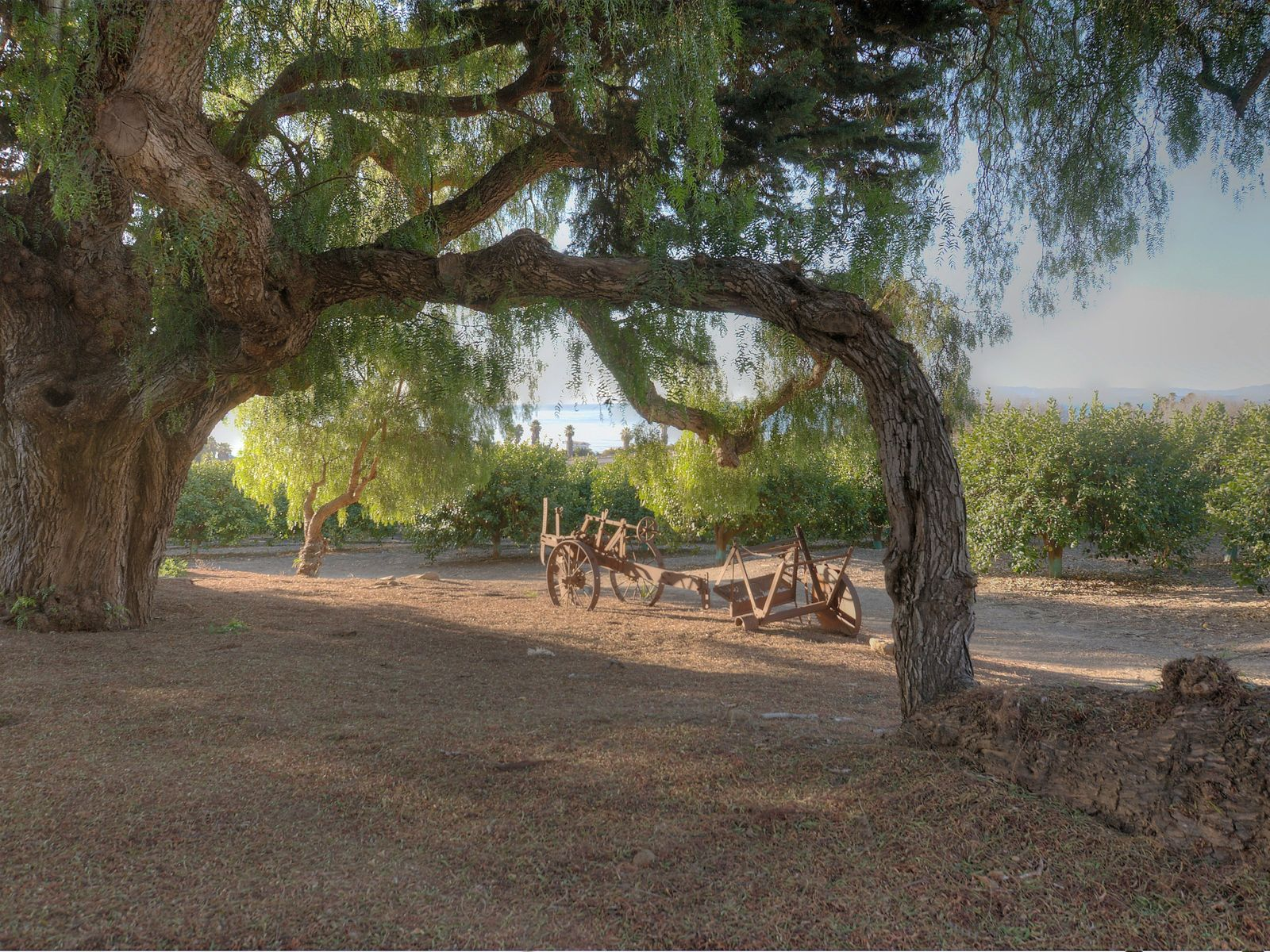 Faria Coastal Ranch