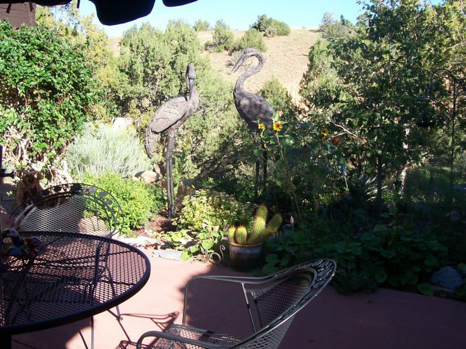 Back Patio over looking the Arroyo Chamiso