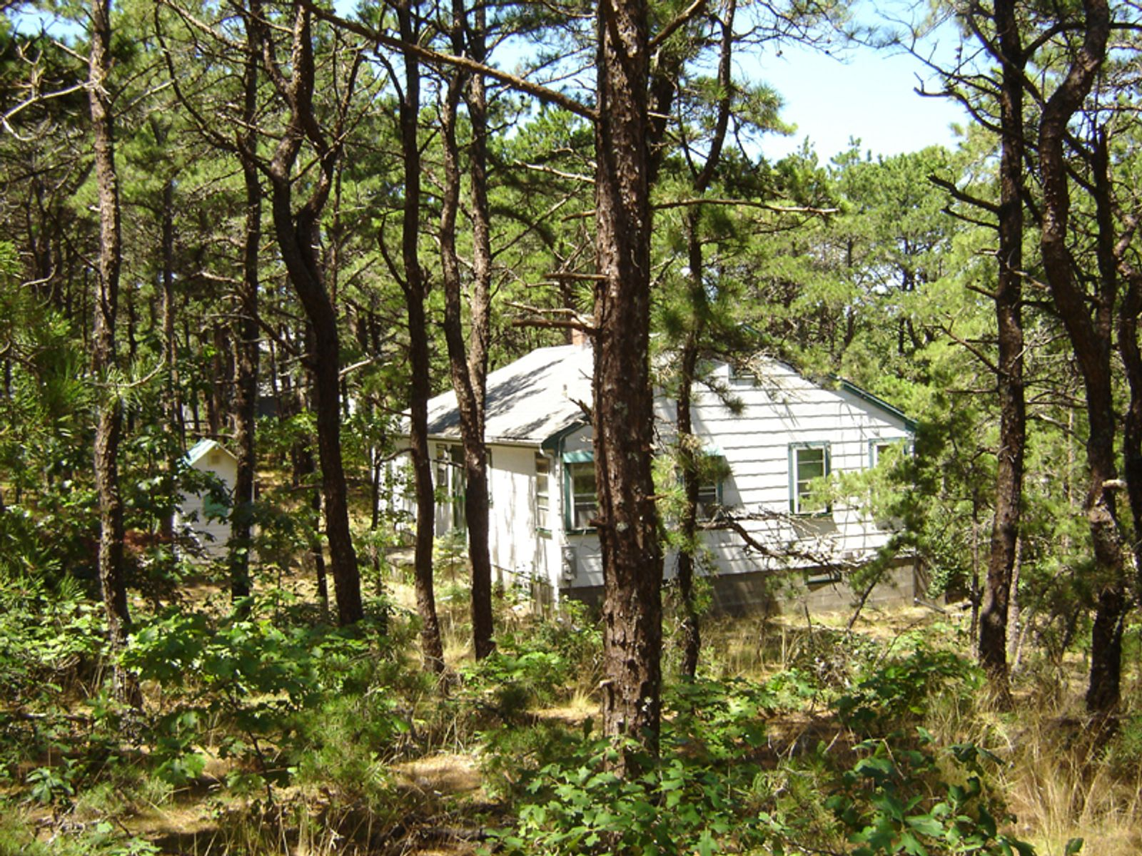 Beach Cottage, Wellfleet MA Single Family Home - Cape Cod Real Estate