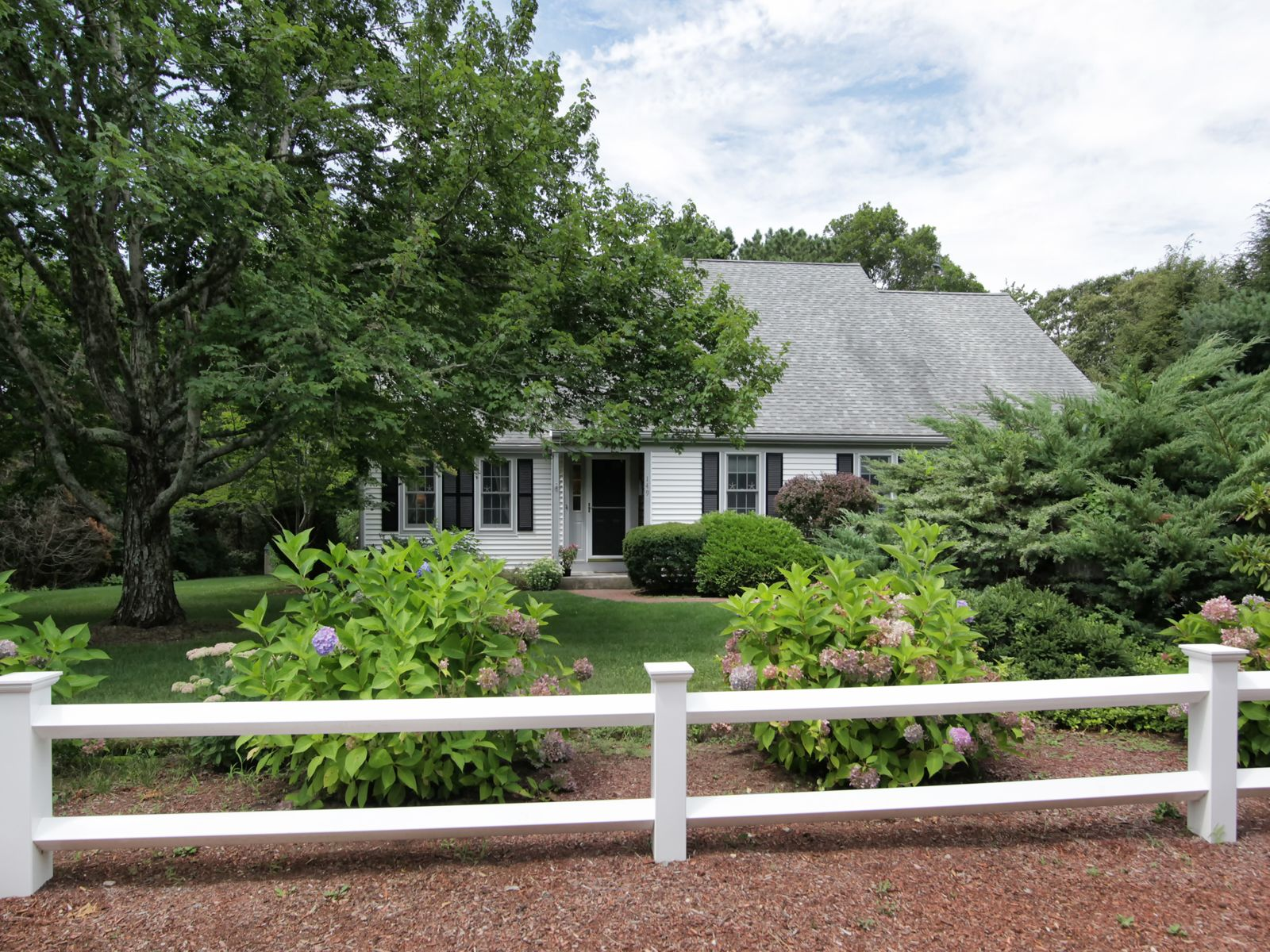 Lovely Cotuit Cape, Cotuit MA Single Family Home - Cape Cod Real Estate