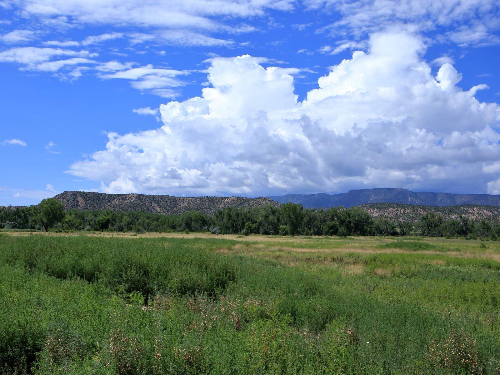 Rancho Viejo County Road 142