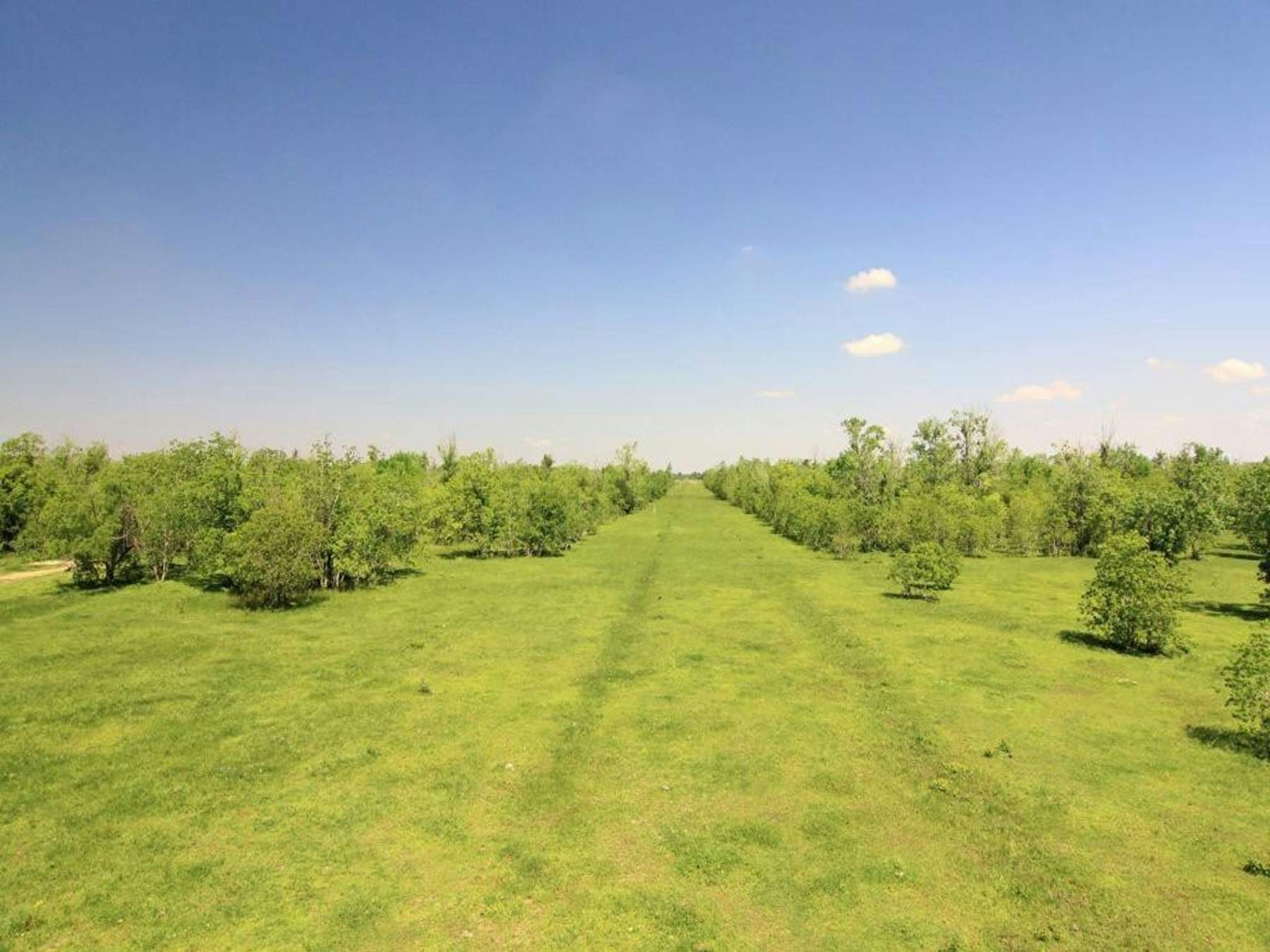 0 County Road, Pearland TX Ranch / Farm - Houston Real Estate