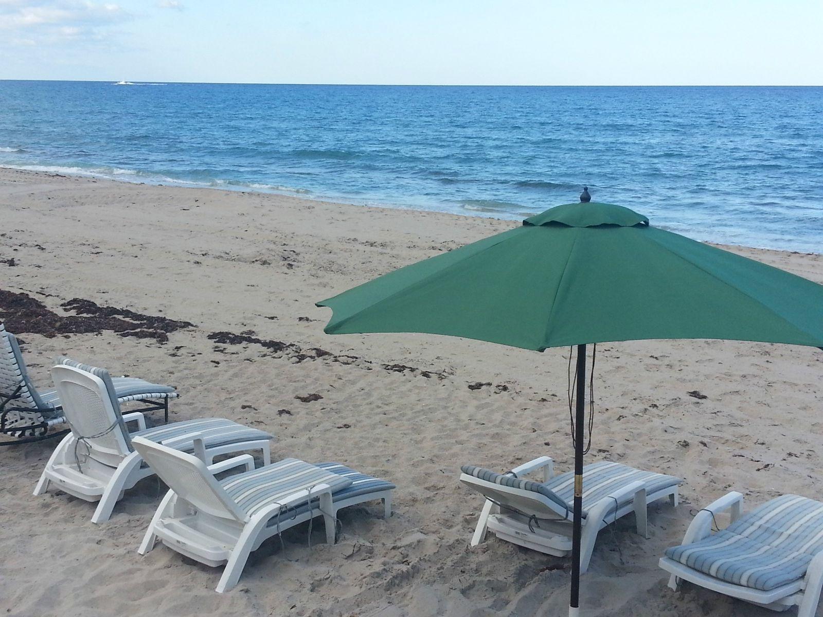 Dorchester - Palm Beach
