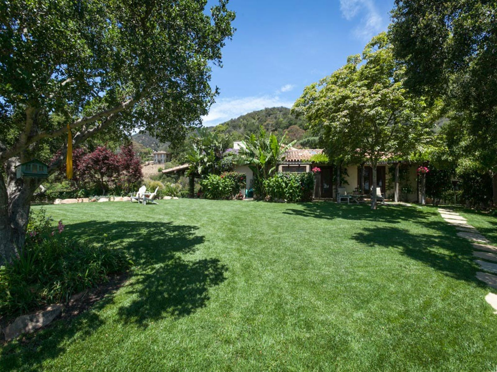 Backyard and Lawn