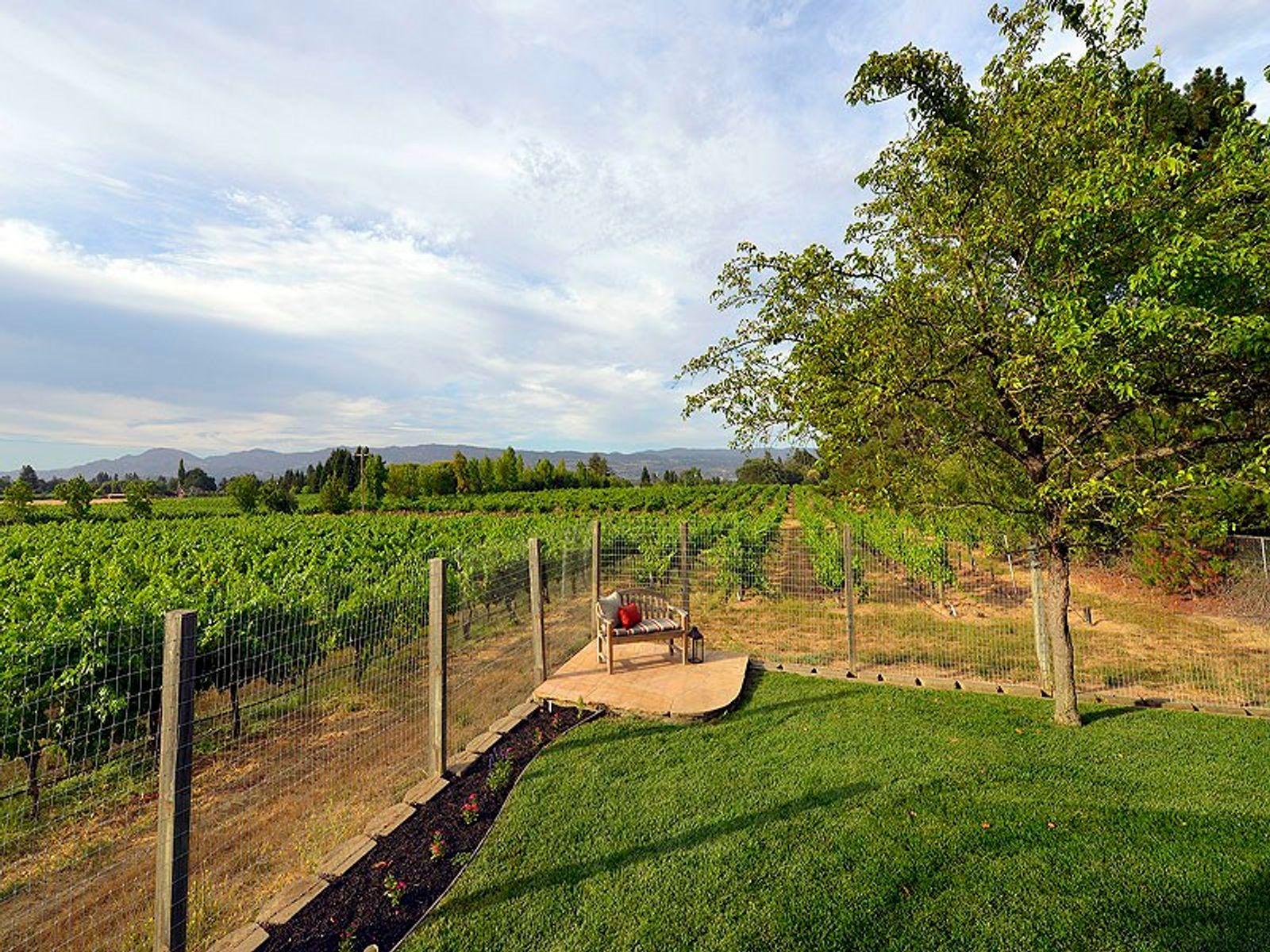 Vineyard View Home
