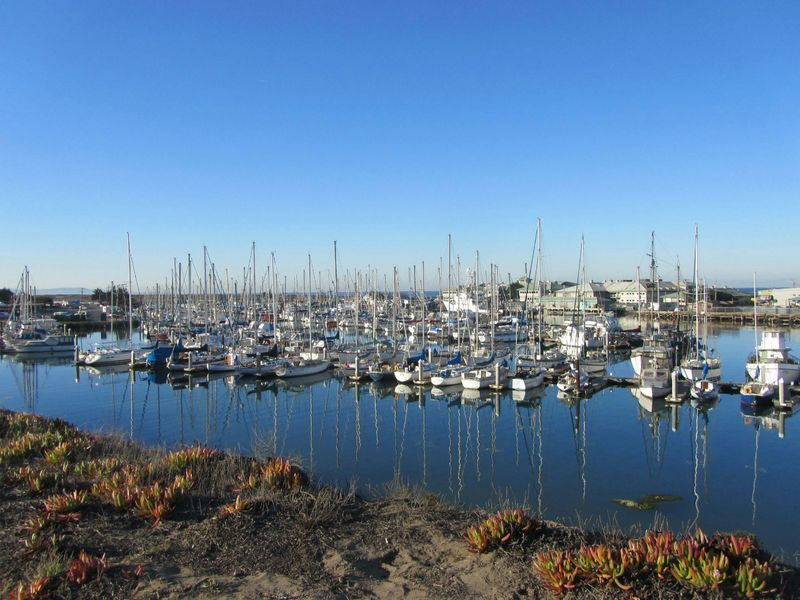 Moss Landing by the Sea