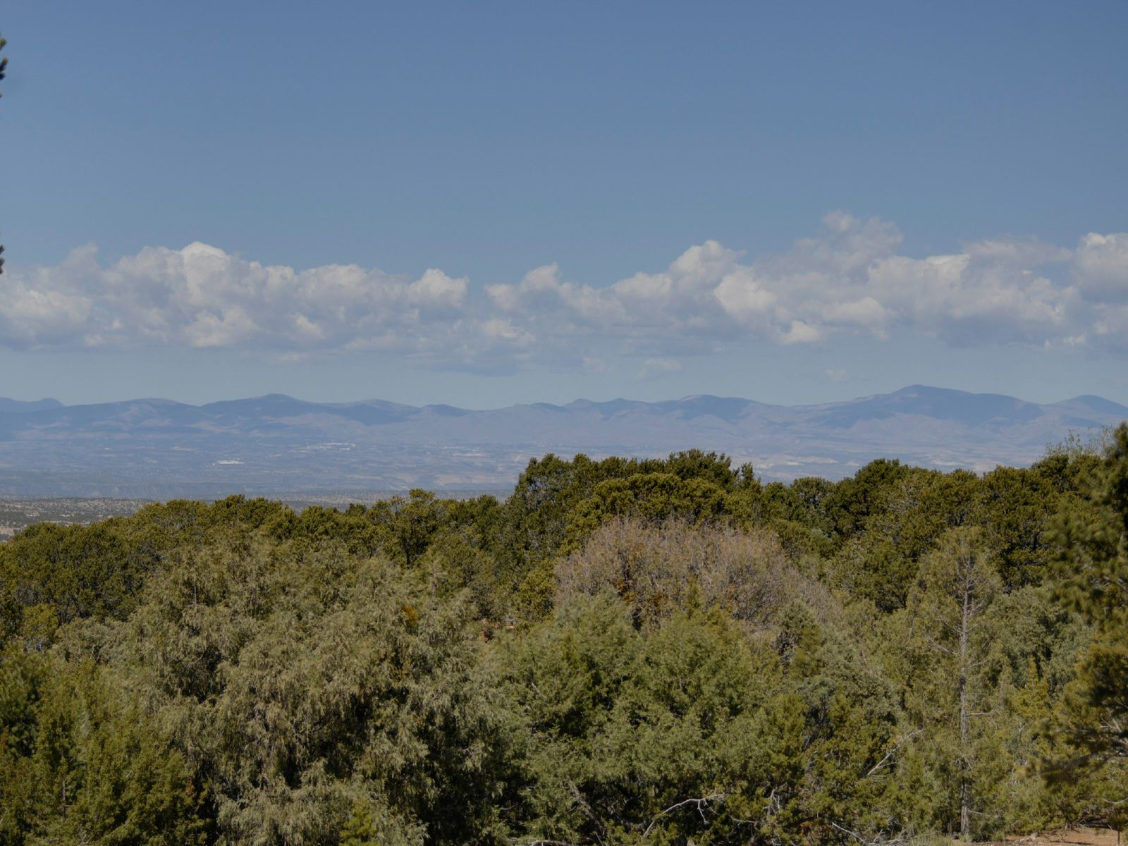 2408 Camino Del Oso