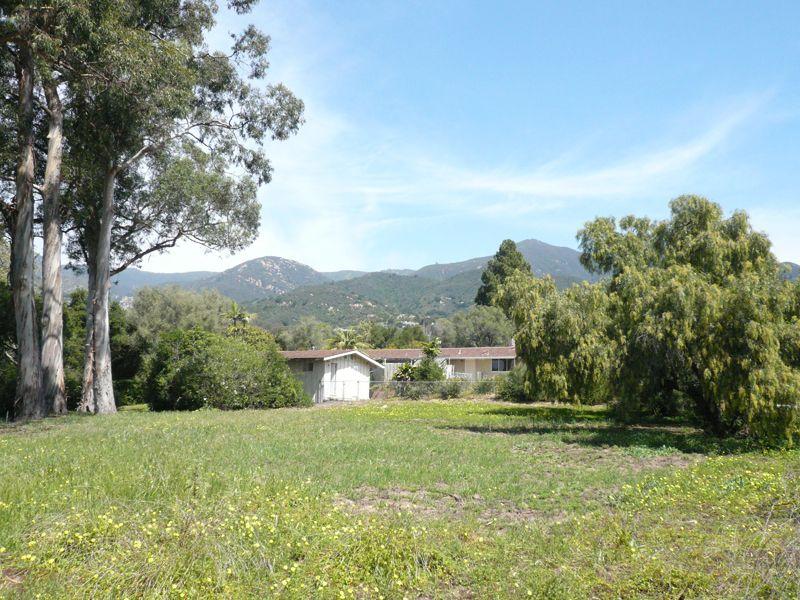 Mountain View Property