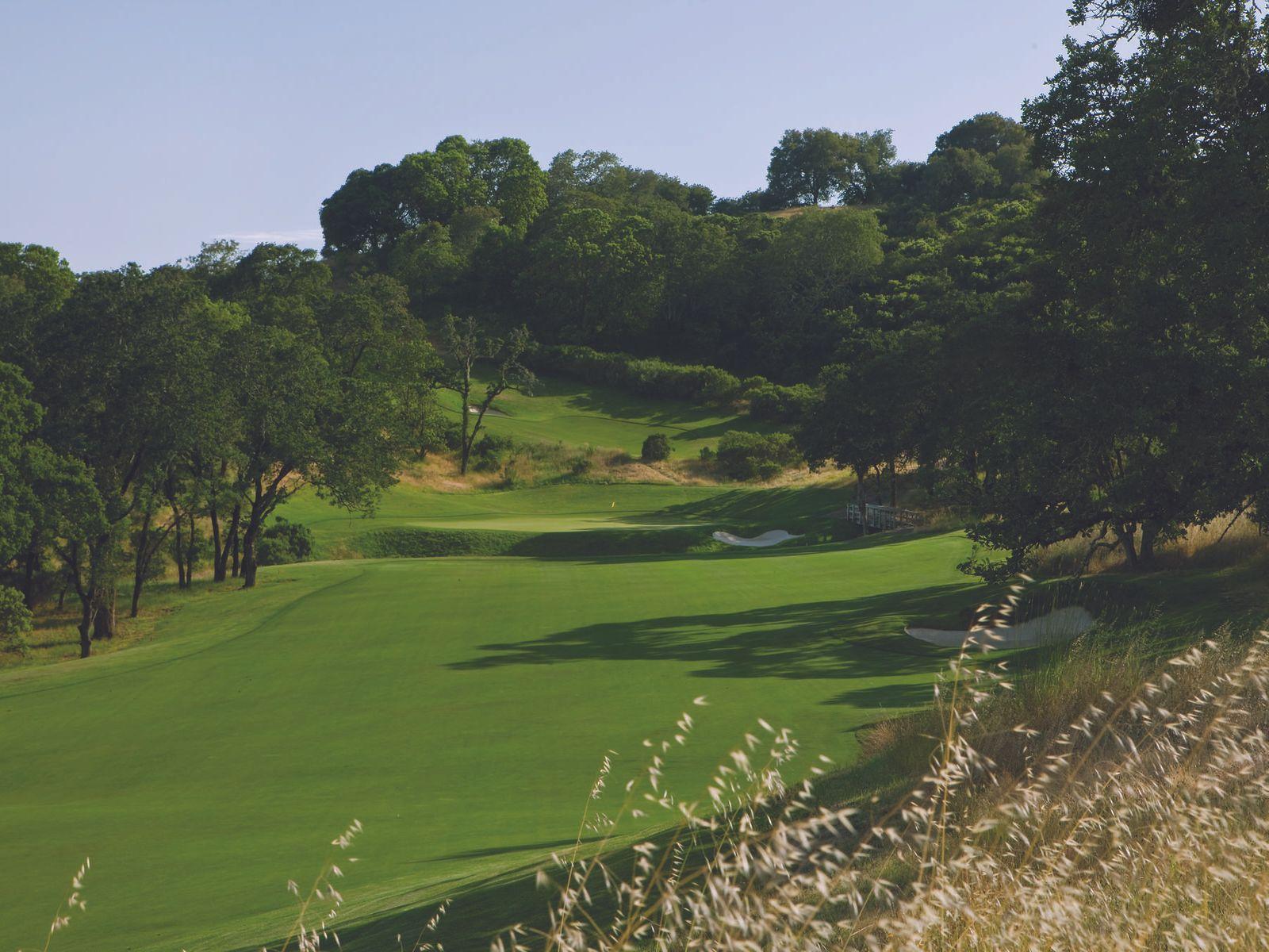 Homesite in Mayacama Golf Club