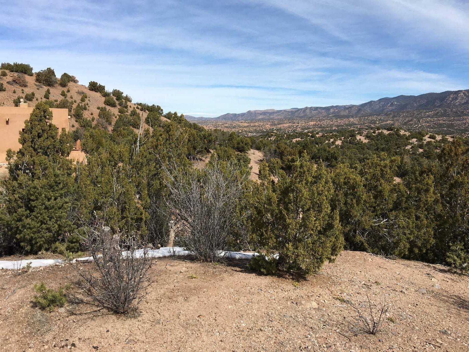 Southeast Views