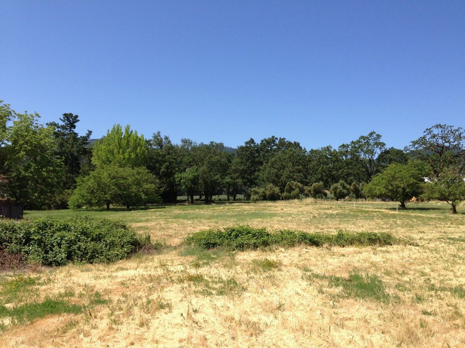 Spectacular Building Site on Bale Lane, Calistoga CA Acreage / Lots - Sonoma - Napa Real Estate