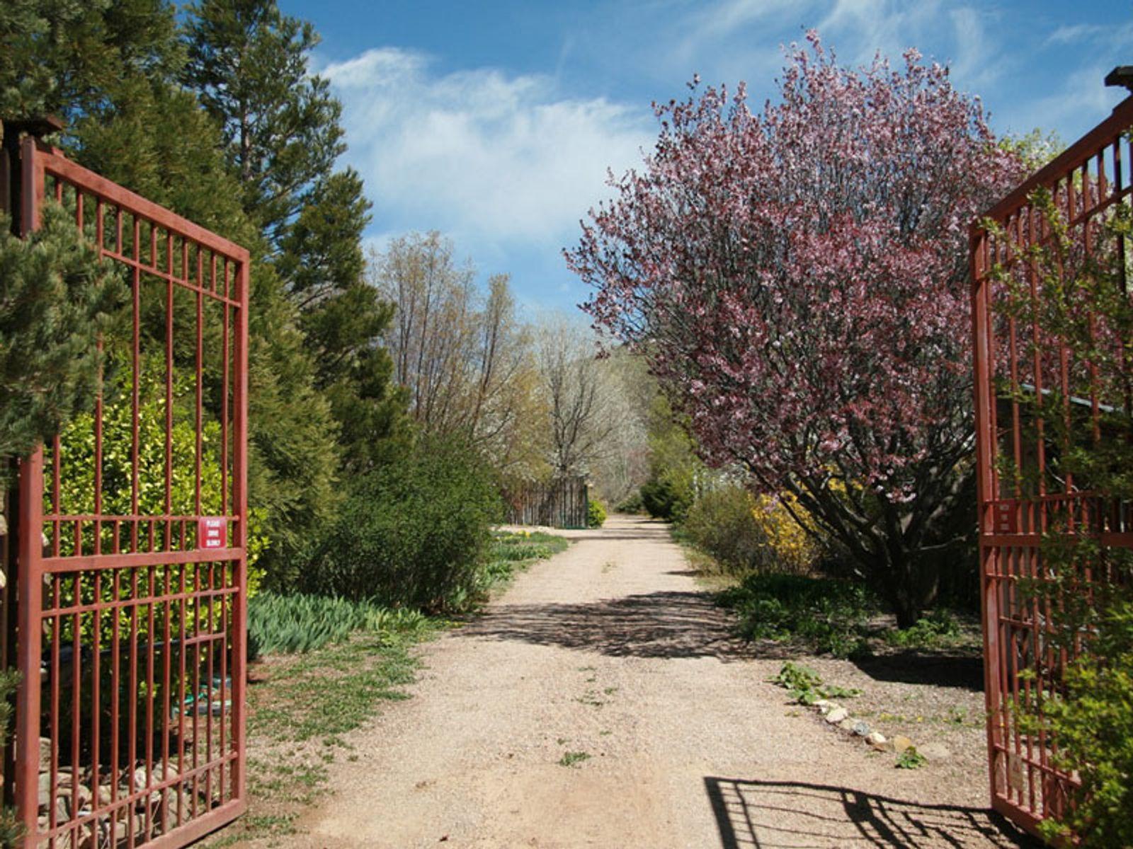 1402 Cerro Gordo Road #C